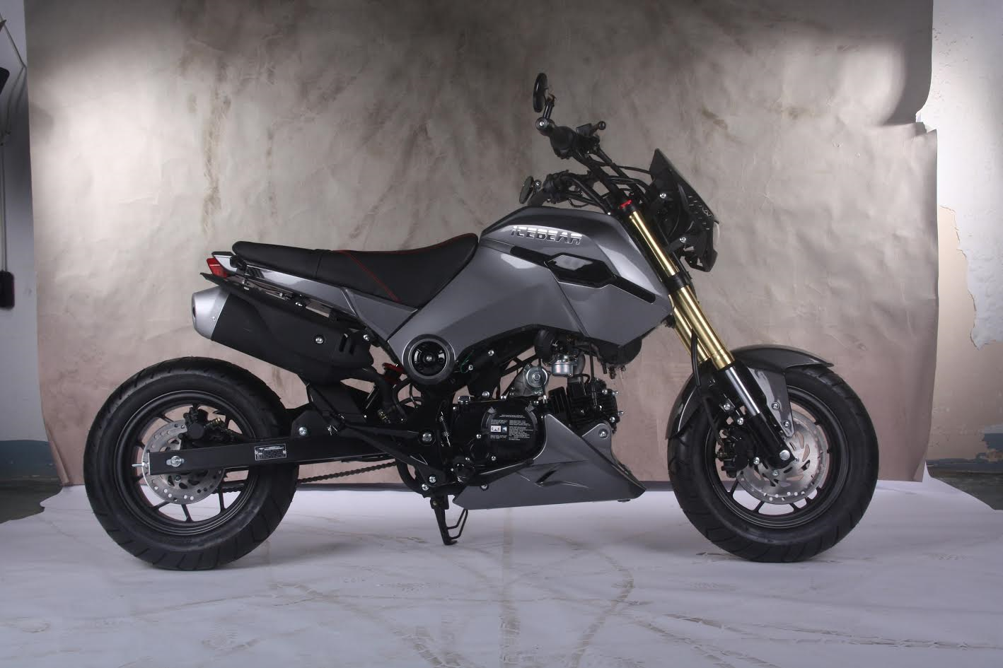 125cc Atv For Sale >> Buy IceBear PMZ125- 1 125cc Fuerza Motorcycle in USA