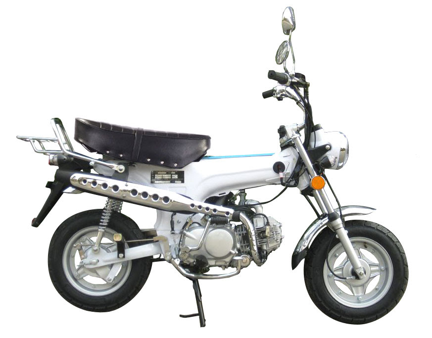 ice bear champion 125cc pbz125 2 birdy 39 s scooters. Black Bedroom Furniture Sets. Home Design Ideas