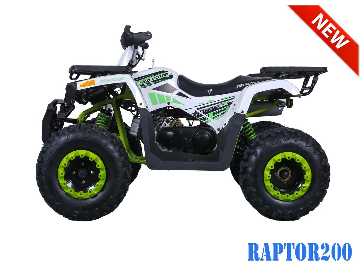 Taotao Raptor 200 Atv Full Auto W Reverse Birdy S